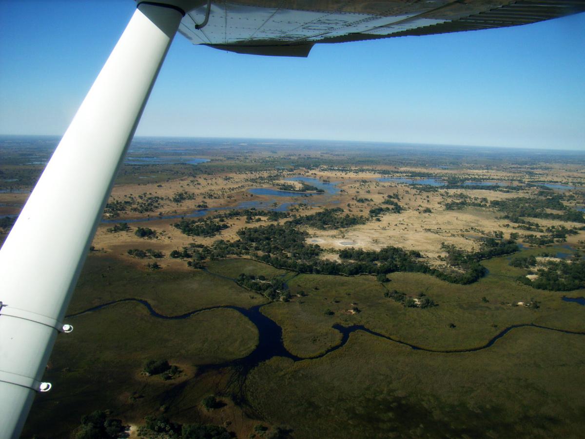 Botswana wie im Flug mit African Feeling Tours