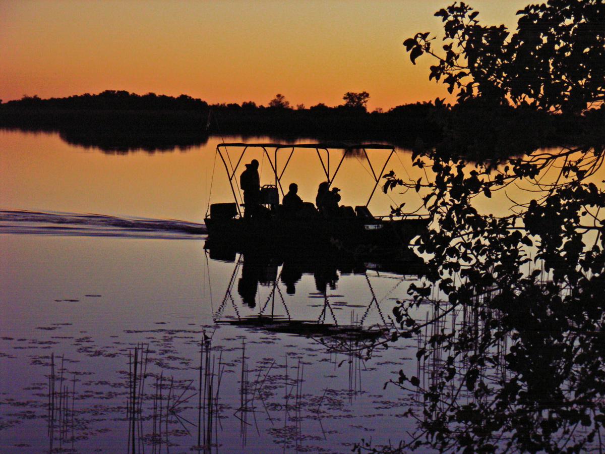 Botswanas Natur erleben mit African Feeling Tours