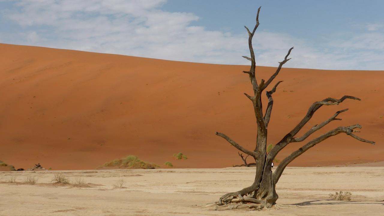 Düne 45 mit African Feeling
