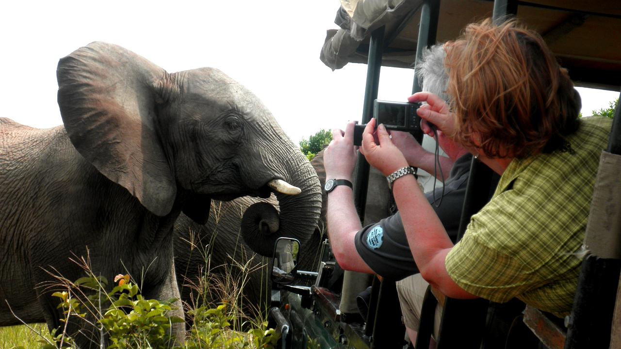 Safari mit African Feeling